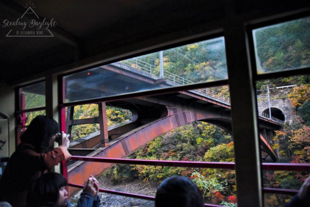 嵐山小火車 紅葉
