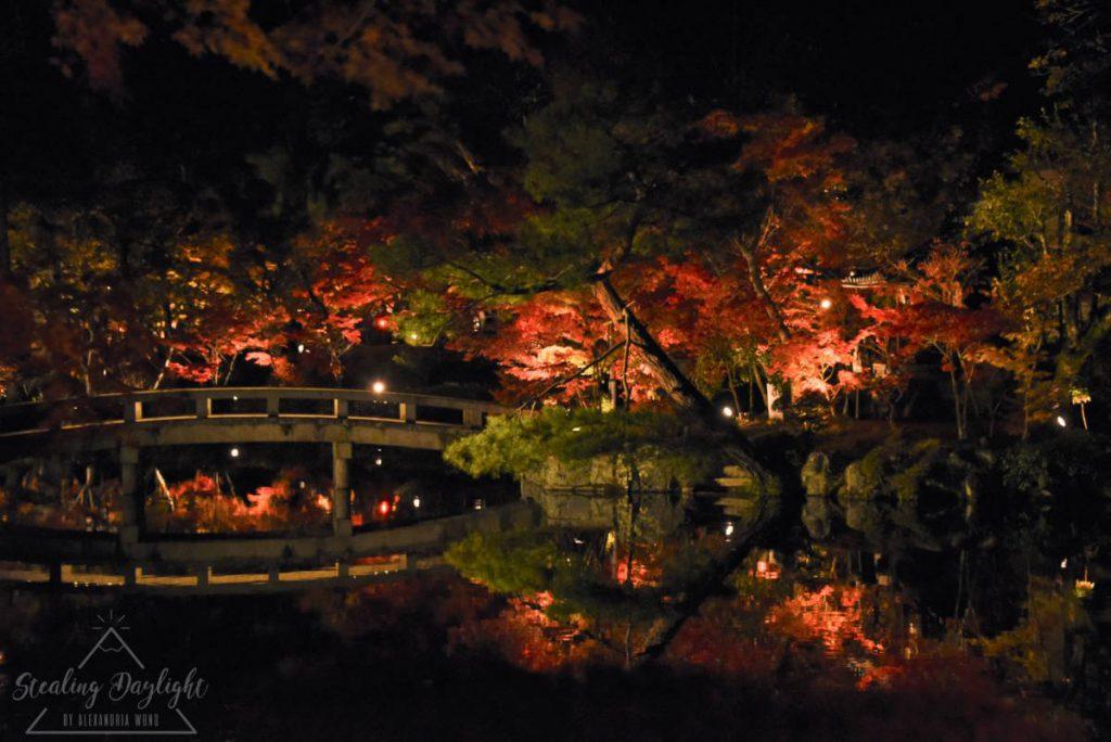 京都 永觀堂 紅葉