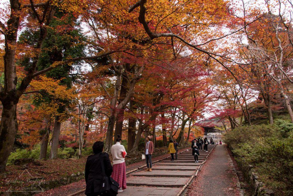 京都 毘沙門堂