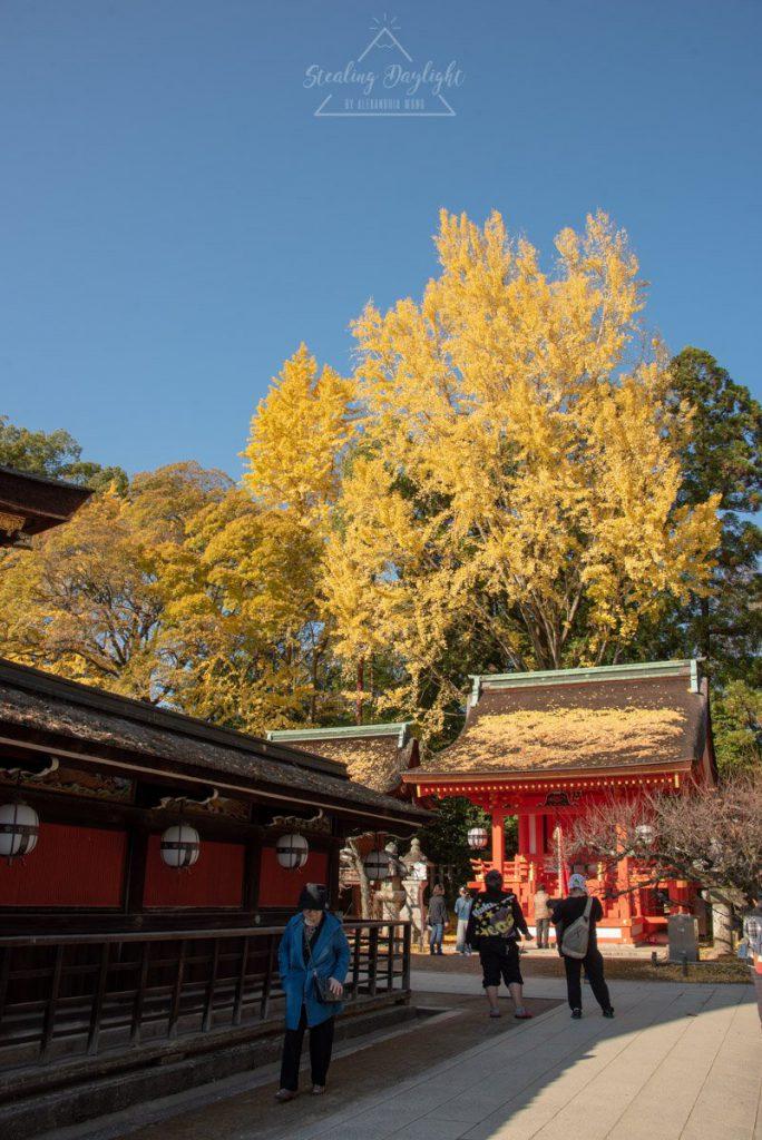 京都 北野天滿宮
