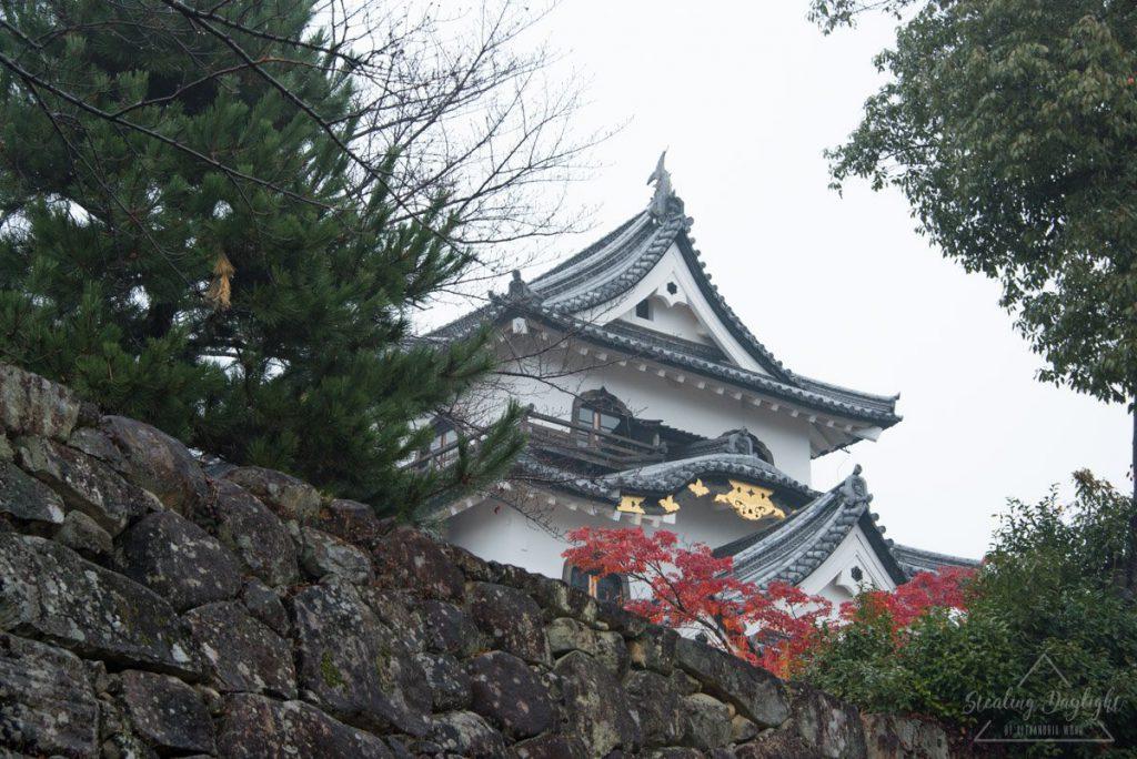 滋賀 彥根城