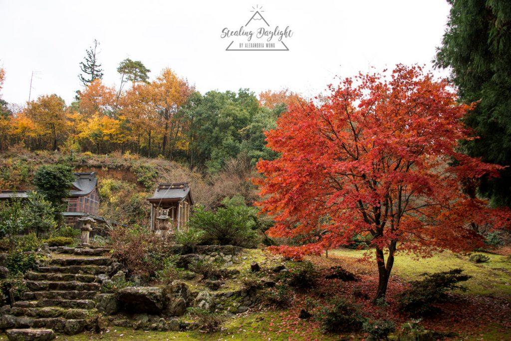 滋賀 神前神社