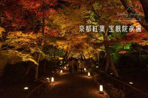 京都 寶嚴院 紅葉 夜間拜觀