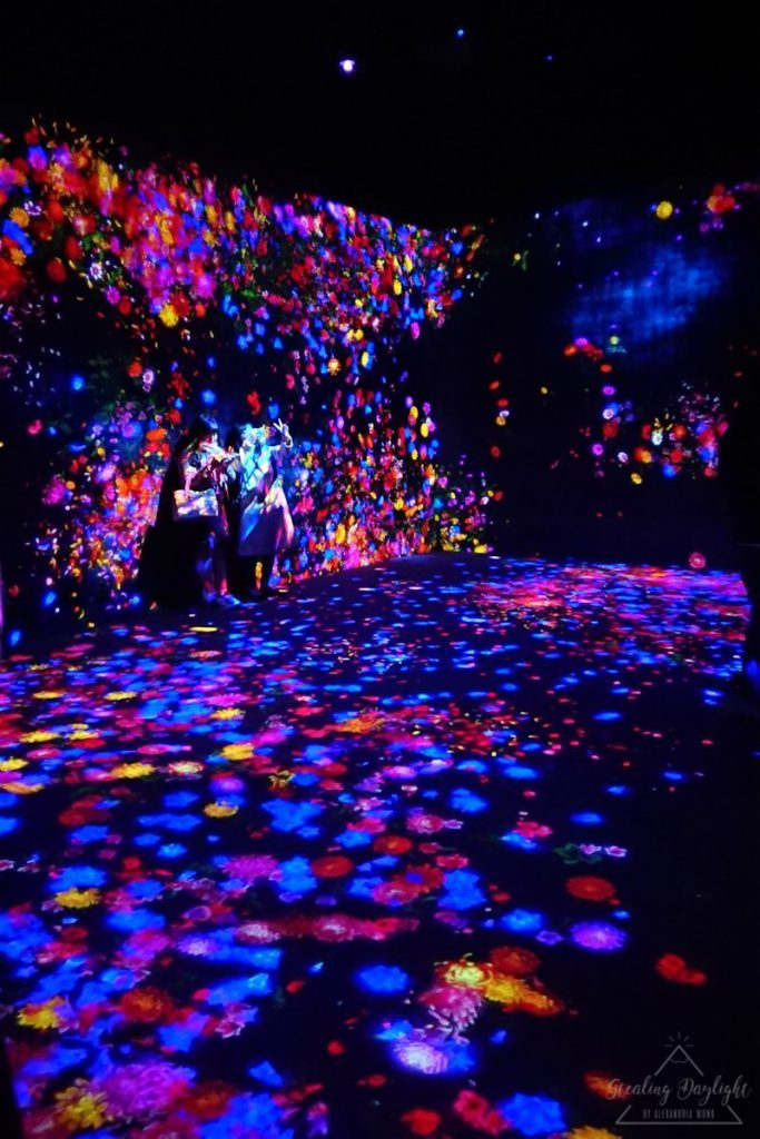 東京 台場 teamLab Borderless Borderless World