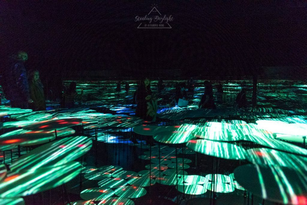 東京 台場 teamLab Borderless Memory of Topography