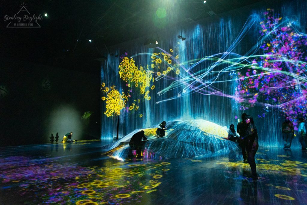 東京 台場 teamLab Borderless A Rock where People Gather