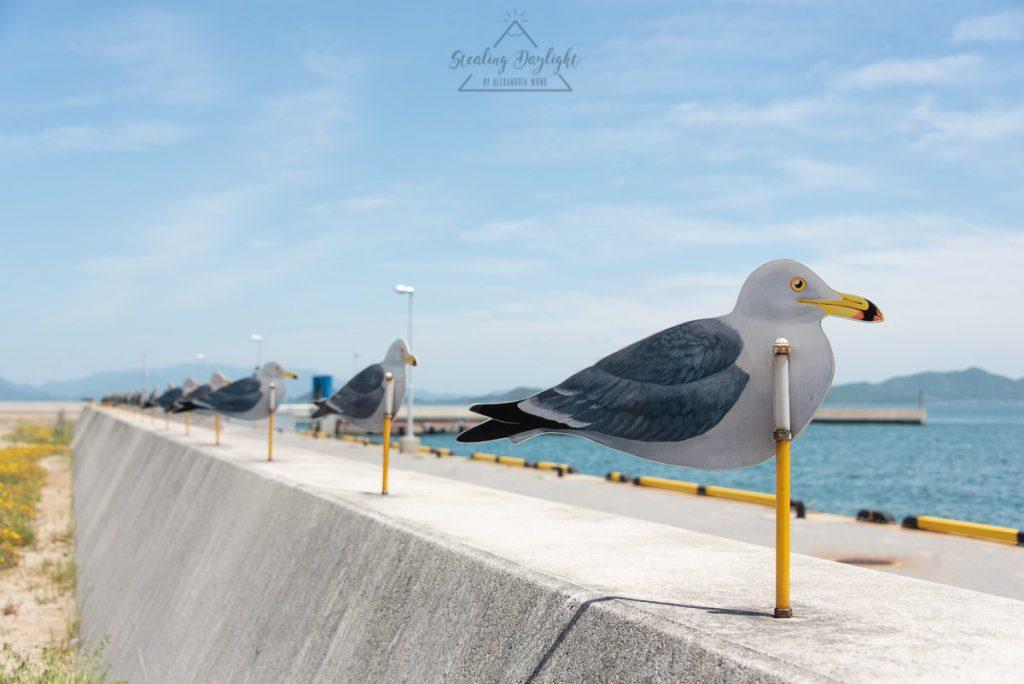 香川 女木島 カモメの駐車場 Sea Gulls Parking Lot mg01