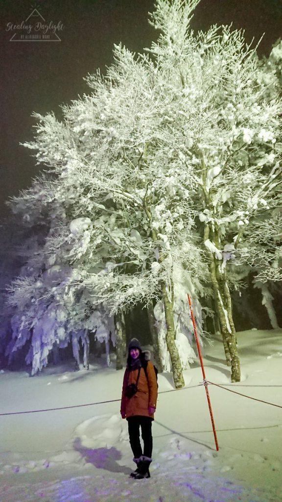 山形 藏王溫泉 纜車 樹冰高原站 樹冰